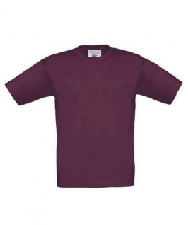 Camiseta berenjena